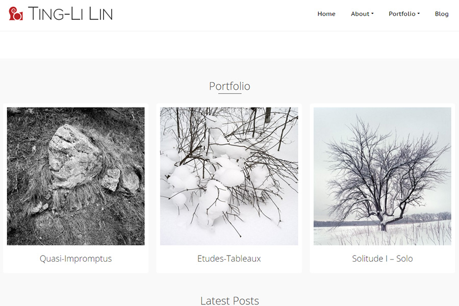 Ting-Li Lin's Website