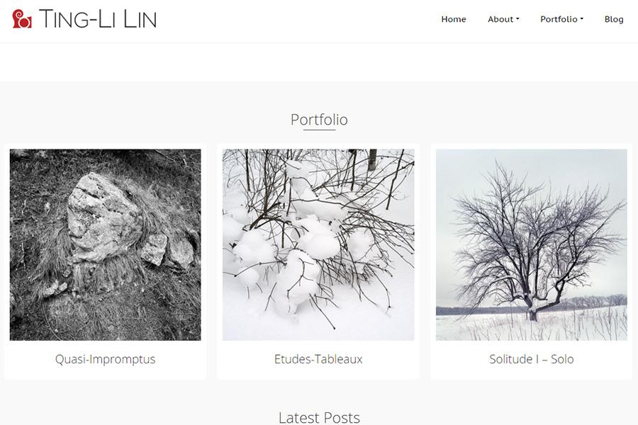 Ting-Li Lin's Website